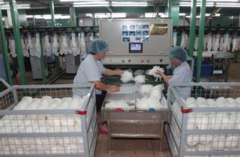永兴工厂-自动包装机