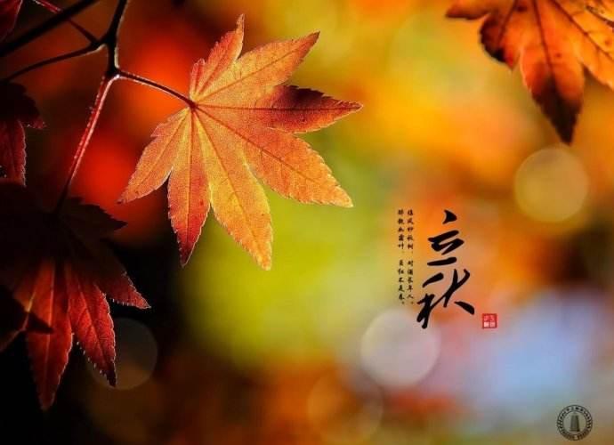 今日立秋但仍难挡深圳高温!预计从9日起降雨增多